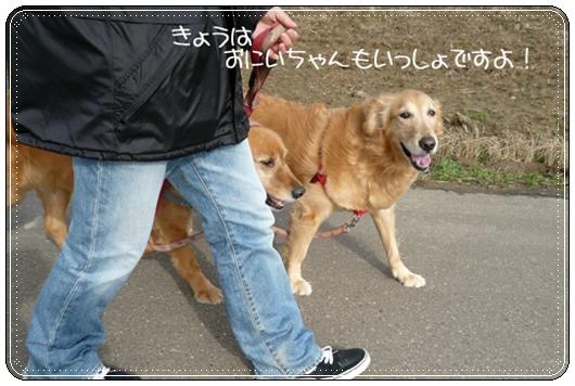 3,16お散歩1