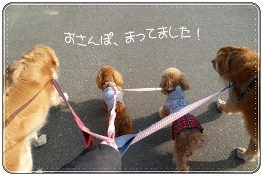 3,21お散歩1