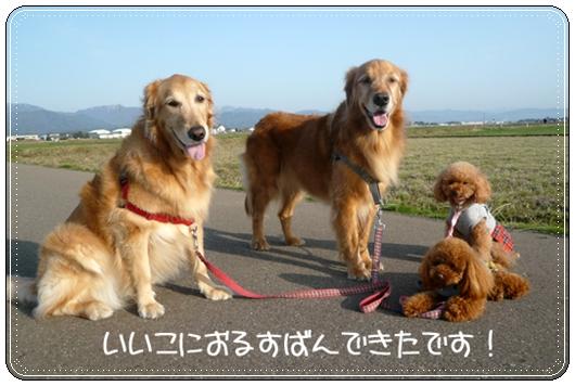3,21お散歩2