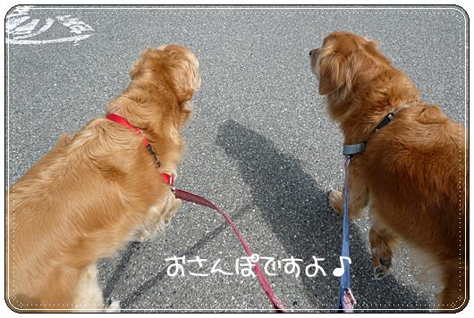 3,23お散歩1