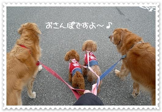 4,2お散歩5