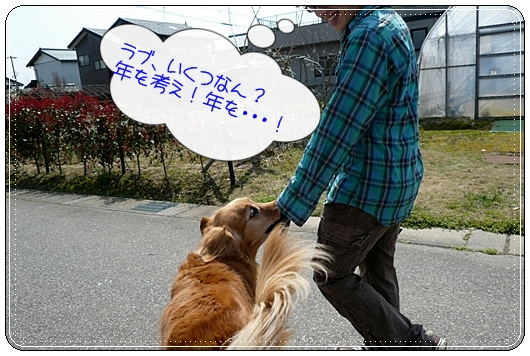 4,3お散歩3