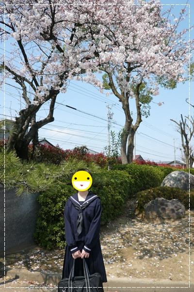 4,7桜6