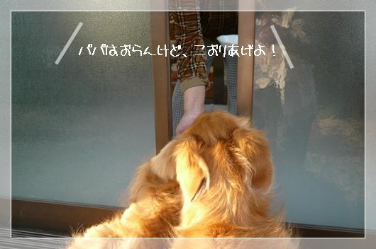 4,12お散歩12