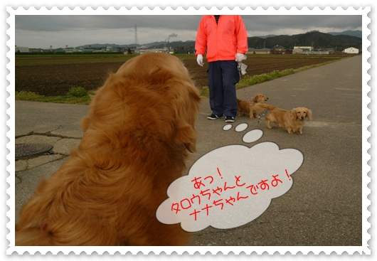 4,15お散歩4