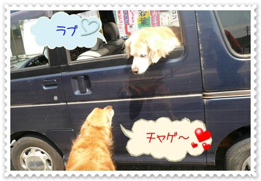 5,8お散歩2