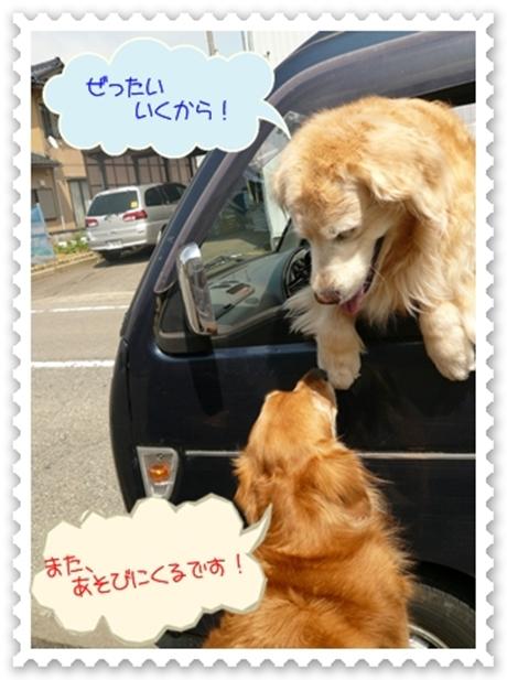 5,8お散歩5