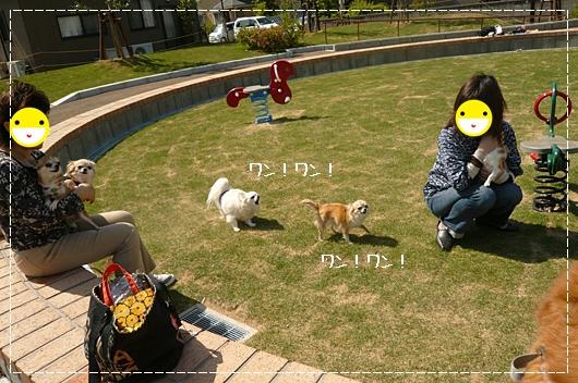 5,13お散歩5