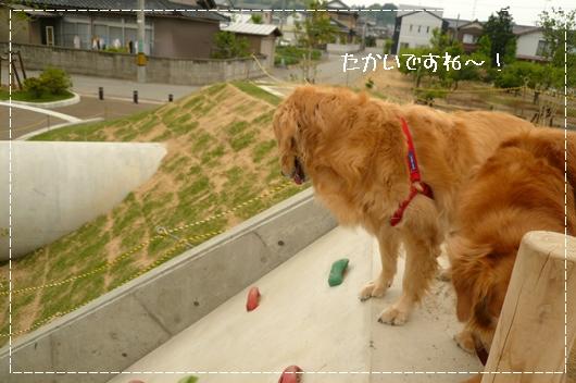 5,21お散歩10