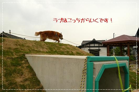 5,21お散歩16