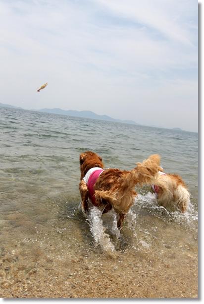 6,2琵琶湖1