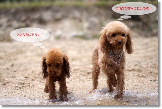 6,2琵琶湖5