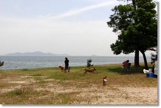 6,4琵琶湖1