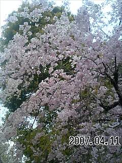 20070411191146