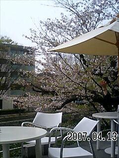 20070413194704