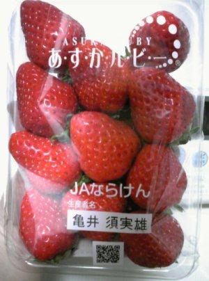 イチゴ~あきひめ