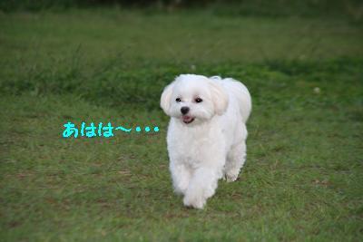 IMG_7170おひさ3
