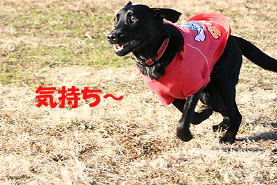 秋が瀬0901-2