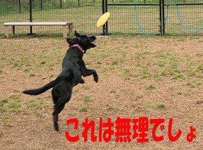 大間木0505-5