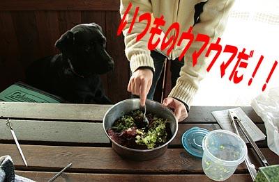 北軽井沢21