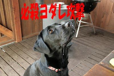 北軽井沢17