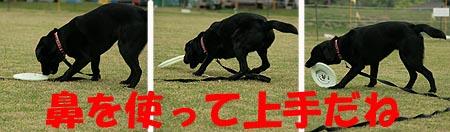北軽井沢23