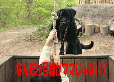 北軽井沢7
