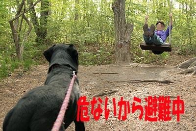 北軽井沢15