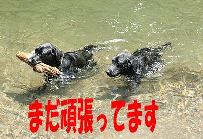 秘密の河原13