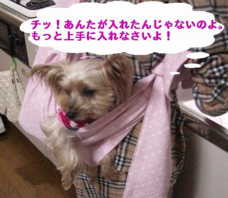 コピー ~ 2008.11.17~ 081