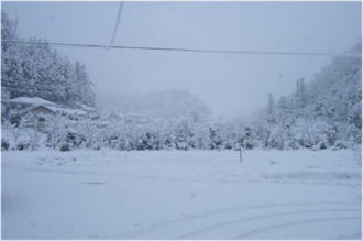 外は真っ白でした。