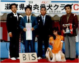 JKC・BIS・CHアカネ