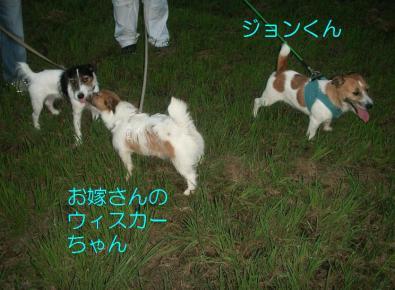 20080906004.jpg