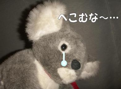 20081011004.jpg