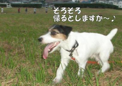 20081018006.jpg