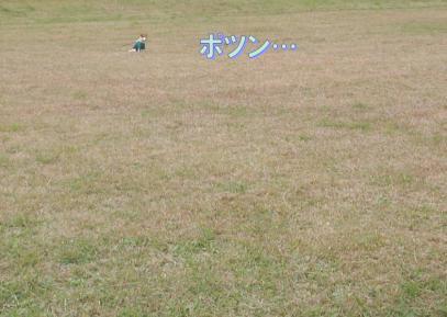 20081108003.jpg