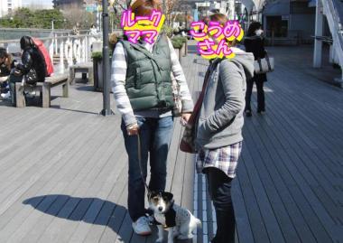 20090315001.jpg