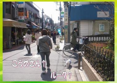 20090327003.jpg
