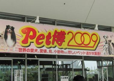 20090504001.jpg