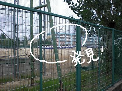 daifuu3.jpg