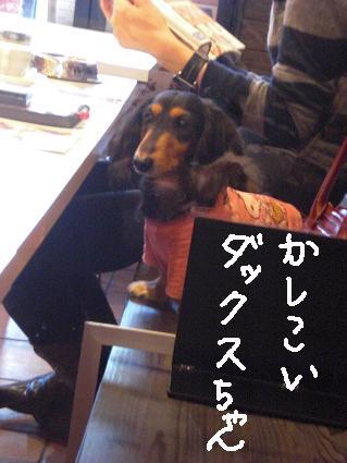 hirakata9.jpg