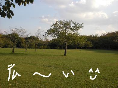 rian12.jpg