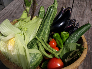 1朝採り野菜