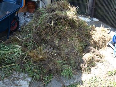 4取り除いた根の山
