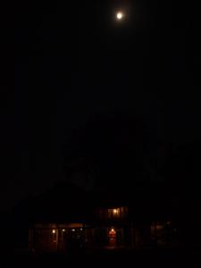 2うさとサイアム 満月の夜に到着