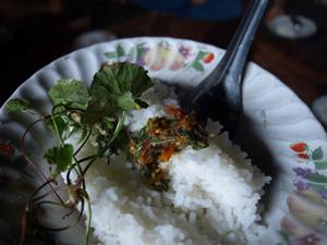 14ホイプロイ・美味しい白米とご飯の共