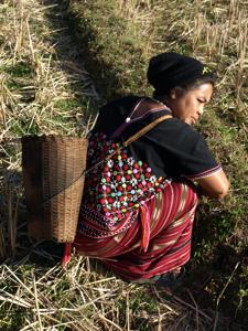 43ホイプロイ・野草を採るミレー