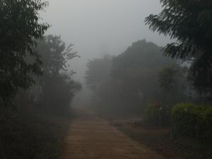 53ホイプロイ・寒い霧の朝