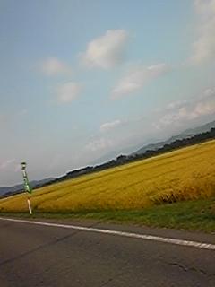 画像 070