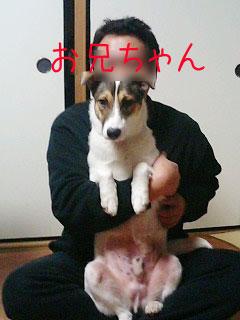20080313-04.jpg